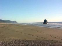 Ocean beach at Turtle Rock Resort