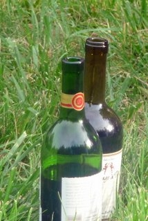Its-a-Trek-thing-good-cheap-wine